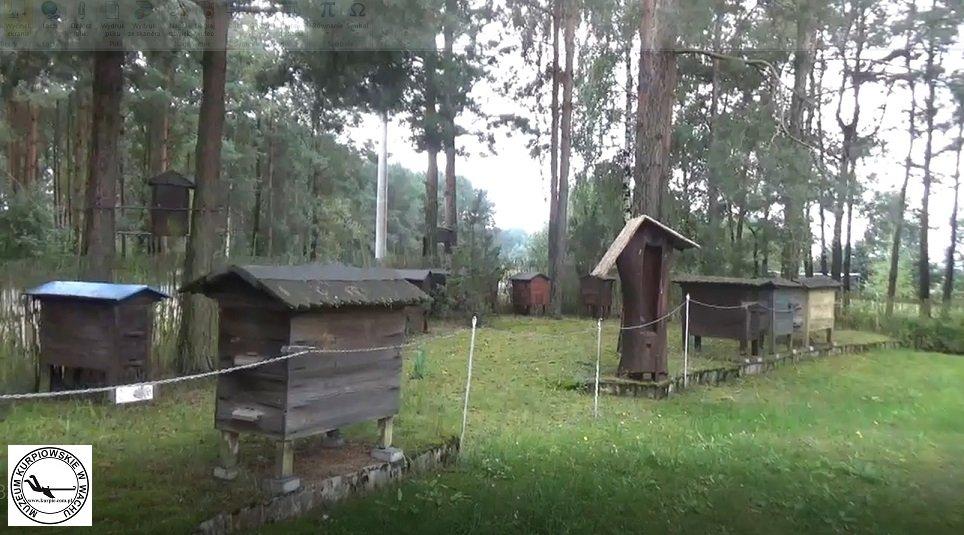 Pasieka w  Muzeum Kurpiowskiego w Wachu